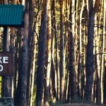 Золотоніський лісгосп – один з найефективніших на Черкащині