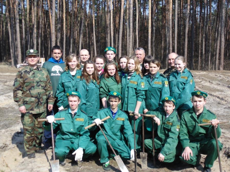 коробівське лісництво 03