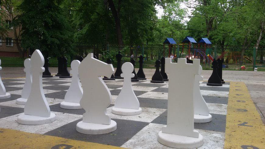 паркові шахи 1