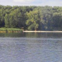 чеховка-пляж-856