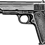 За зберігання вогнепальної зброї жителя міста покарали умовним терміном