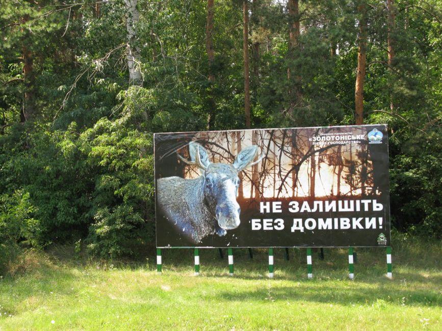 лісництво 01 [870_650]