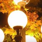 Освітлення на вулицях міста працюватиме цілу ніч