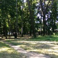 парк-біля-стадіону