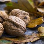 Приймання горіхів на узбіччі: ефективний бізнес чи пострадянський архаїзм?