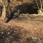 """Містяни збирають перші підсніжники від вдячних відвідувачів майбутнього гідропарку """"Надія"""" [ФОТО]"""