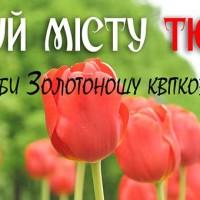 подаруй-місту-тюльпан-856