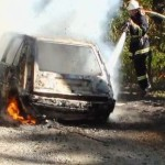 Через коротке замикання на лісовій дорозі вщент згорів автомобіль [ФОТО, ВІДЕО]