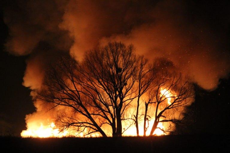 липівський заказник пожежа