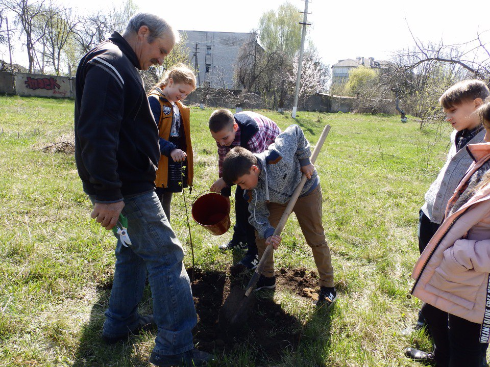 посади дерево санаторна школа інтернат